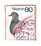 fukuiwashi22.jpg