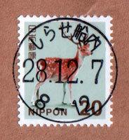 shirase28.jpg